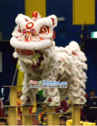Adorable White Wool Lion Dance Head and Costume Complete Set