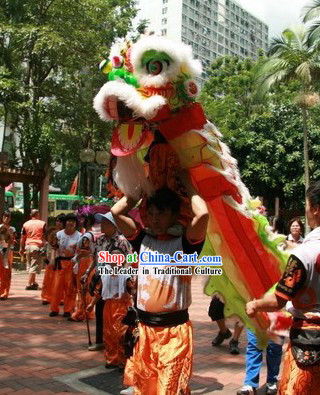One Kid FUT SAN Lion Dance Costumes