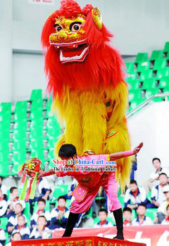 Classic Northern Lion Dance Costume Complete Set