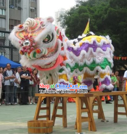 Happy New Year Chinese Classical FUT SAN Rainbow Lion Dance Costumes