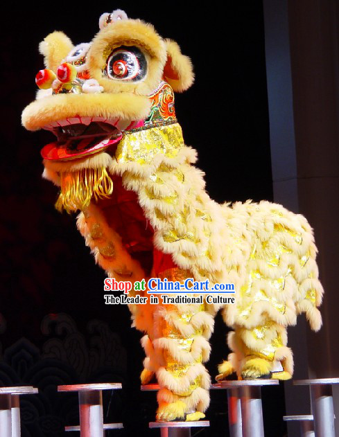 Standard Long Wool Southern Lion Dance Costumes Complete Set for Kids