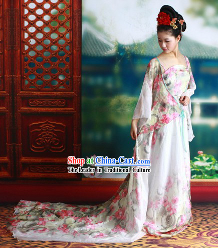 Tang Dynasty Palace Lady Costumes and Headpiece