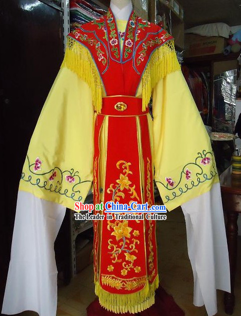 Traditional Chinese Long Sleeves Opera Palace Dancing Costumes for Women