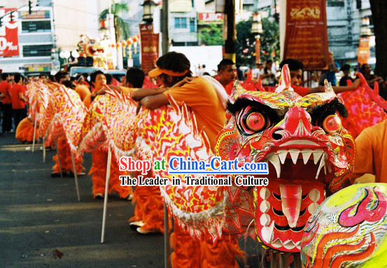 Chinese Year Lumious Dragon Dance Costume for 9-10 Persons