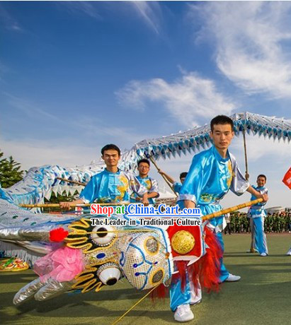 Traditional Silver Dragon Dance Equipment for Ten College Students
