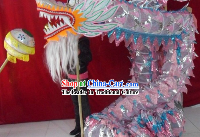 Lightweight Competition and Performance Silver Net Dragon Dance Costume for 9-10 Dancers