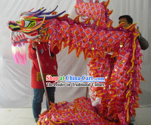 Luminous Dragon Dance Costume for 9-10 People