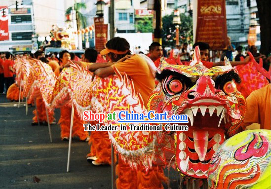 Professional Competition and Parade Glow in the Dark Dragon Dance Costumes Complete Set