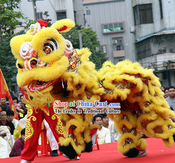 Supreme Asian Competition and Parade Lion Dance Costume Complete Set