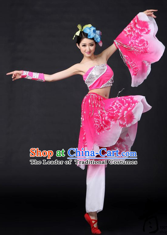 Chinese Classical Girls Dance Costumes Leotards Dance Supply Clothes and Hair Accessories Complete Set