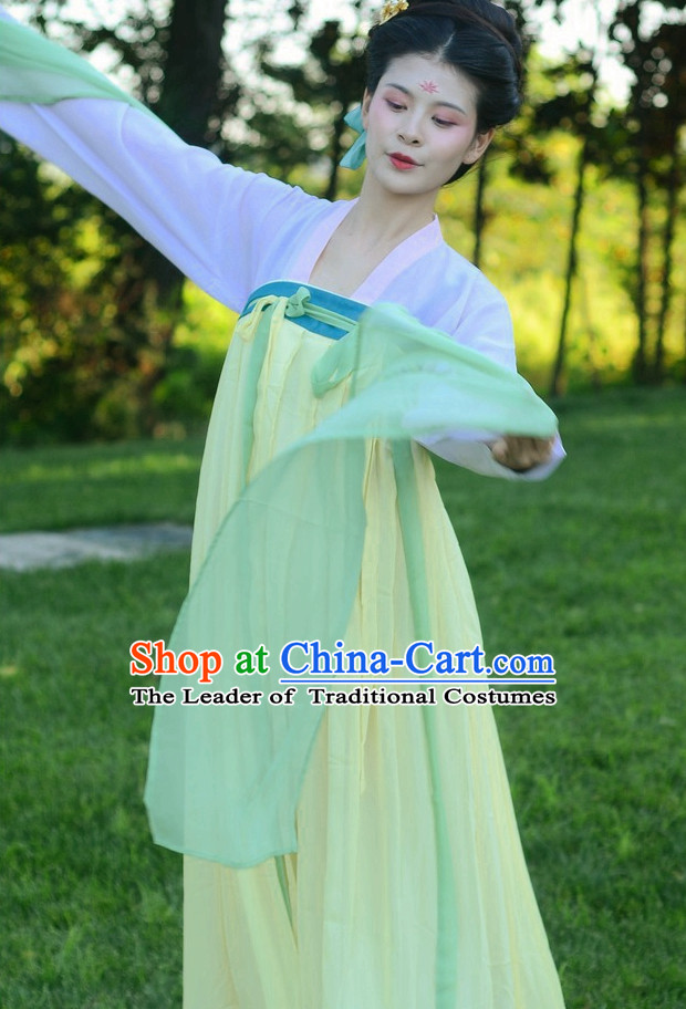 Chinese Costumes Tang Dynasty Classic Dresses Costume Free Custom Tailored Service