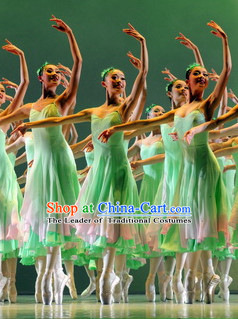 Group Women Ballet Costume Dance Costumes Dancewear Dance Supply Free Custom Tailored Service