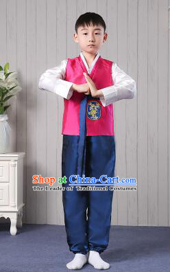 Korean Traditional Dress for Children Boy Clothes Kid Costumes Stage Show Dancing Red Top BluePants