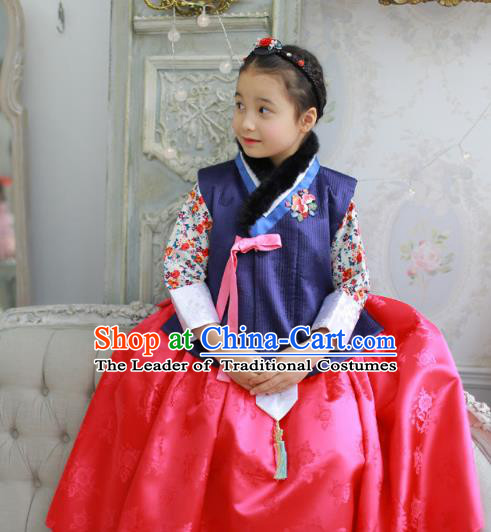 Traditional Korean Costumes Bride Formal Attire Ceremonial Red Dress, Korea Hanbok Court Embroidered Clothing for Kids