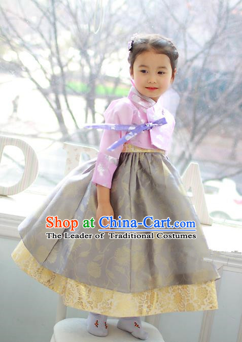 Traditional Korean Handmade Formal Occasions Costume Embroidered Pink Blouse and Grey Dress Hanbok Clothing for Girls