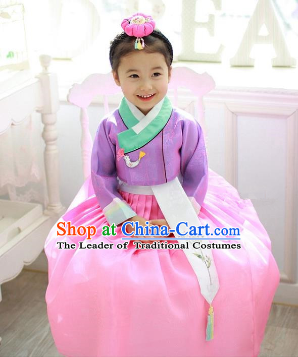 Traditional Korean Handmade Formal Occasions Costume Embroidered Baby Princess Purple Blouse and Dress Hanbok Clothing for Girls