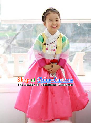 Traditional Korean Handmade Formal Occasions Costume Baby Princess Yellow Embroidered Blouse and Pink Dress Hanbok Clothing for Girls