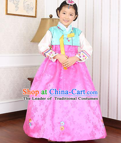 Asian Korean Traditional Handmade Formal Occasions Costume Baby Princess Embroidered Blue Blouse and Pink Dress Hanbok Clothing for Girls