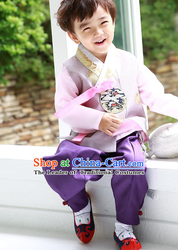 Asian Korean Traditional Handmade Formal Occasions Costume Prince Embroidered Hanbok Clothing for Boys