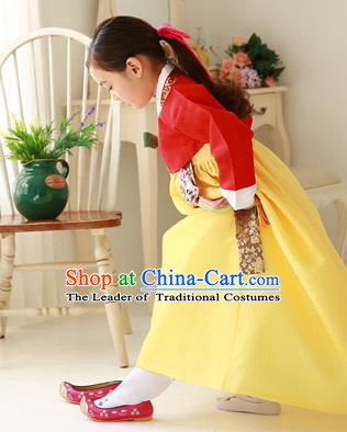 Asian Korean Traditional Handmade Formal Occasions Costume Palace Princess Embroidered Red Blouse and Yellow Dress Hanbok Clothing for Girls
