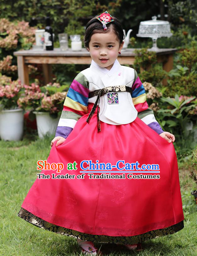 Asian Korean National Traditional Handmade Formal Occasions Girls Embroidery Hanbok Costume White Blouse and Red Dress Complete Set for Kids