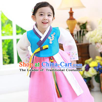 Traditional Korean National Handmade Formal Occasions Girls Hanbok Costume Embroidered Blue Blouse and Pink Dress for Kids