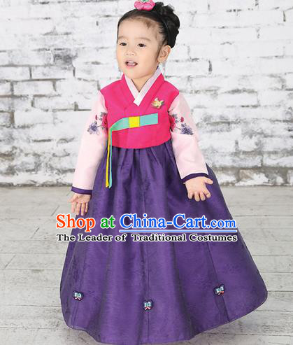 Traditional Korean National Handmade Formal Occasions Girls Hanbok Costume Embroidered Red Blouse and Purple Dress for Kids