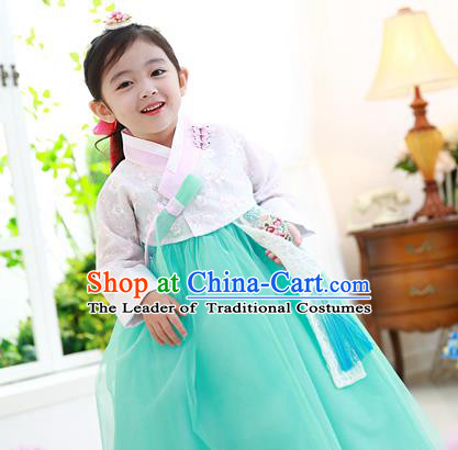 Traditional Korean National Handmade Formal Occasions Girls Hanbok Costume Embroidered White Lace Blouse and Green Dress for Kids