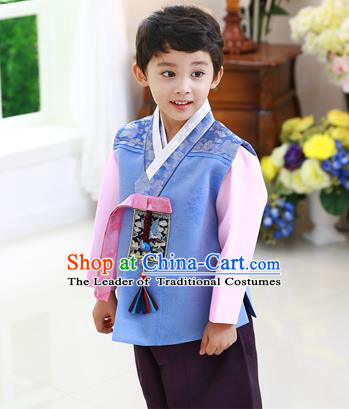 Asian Korean National Traditional Handmade Formal Occasions Boys Embroidery Blue Hanbok Costume Complete Set for Kids