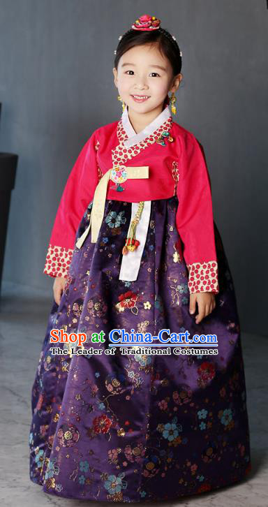 Asian Korean National Traditional Handmade Formal Occasions Girls Embroidery Hanbok Costume Red Blouse and Purple Dress Complete Set for Kids