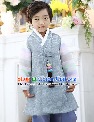 Asian Korean National Traditional Handmade Formal Occasions Boys Embroidery Grey Hanbok Costume Complete Set for Kids