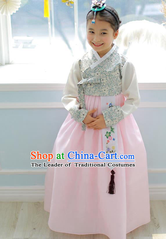 Asian Korean National Handmade Formal Occasions Embroidery Blouse and Pink Dress Hanbok Costume for Kids