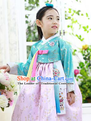 Asian Korean National Handmade Formal Occasions Embroidery Green Blouse and Pink Dress Hanbok Costume for Kids