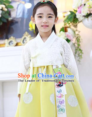 Asian Korean National Handmade Formal Occasions Embroidered White Lace Blouse and Yellow Dress Palace Hanbok Costume for Kids