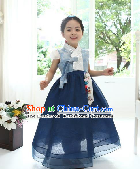 Asian Korean National Handmade Formal Occasions Wedding Bride Clothing Embroidered Blue Blouse and Dress Palace Hanbok Costume for Kids