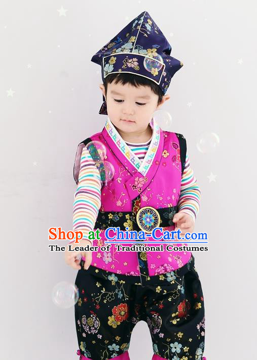 Asian Korean National Traditional Handmade Formal Occasions Boys Embroidery Rosy Vest Hanbok Costume Complete Set for Kids