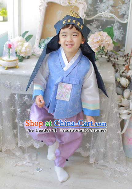 Asian Korean National Traditional Handmade Formal Occasions Boys Embroidery Light Blue Vest Hanbok Costume Complete Set for Kids