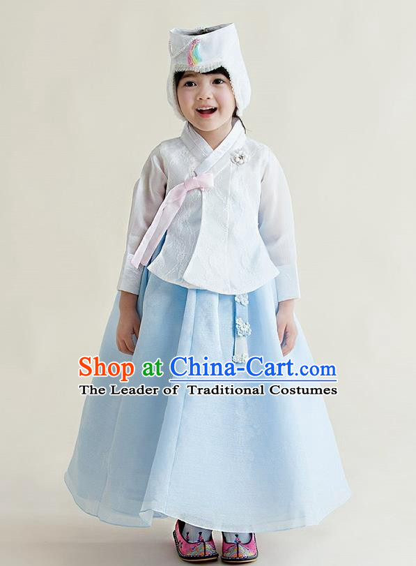 Korean National Handmade Formal Occasions Girls Clothing Palace Hanbok Costume Embroidered White Blouse and Blue Dress for Kids