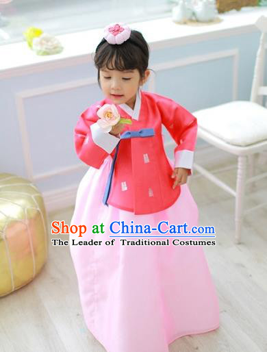 Korean National Handmade Formal Occasions Girls Clothing Palace Hanbok Costume Embroidered Red Blouse and Pink Blue Dress for Kids