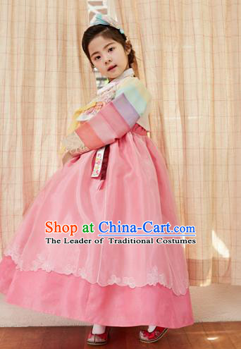 Korean National Handmade Formal Occasions Girls Clothing Palace Hanbok Costume Embroidered White Blouse and Pink Dress for Kids