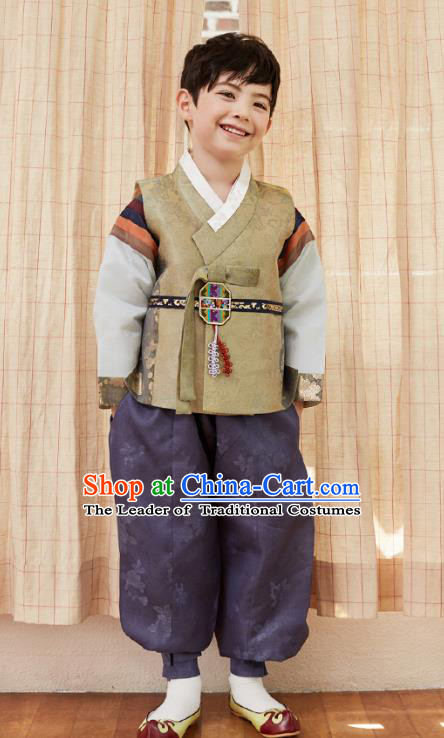 Asian Korean National Traditional Handmade Formal Occasions Boys Embroidery Brown Vest Hanbok Costume Complete Set for Kids