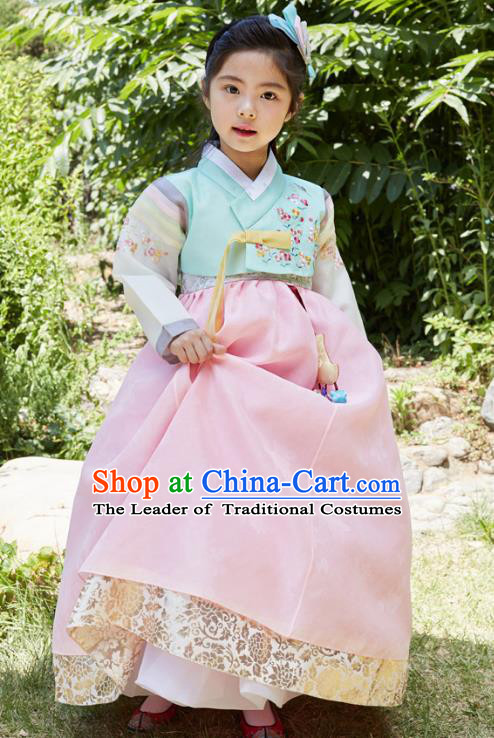 Traditional Korean National Handmade Formal Occasions Girls Clothing Palace Hanbok Costume Embroidered Green Blouse and Pink Dress for Kids