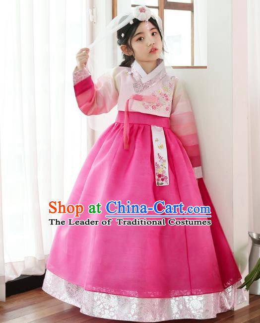 Traditional Korean National Handmade Formal Occasions Girls Clothing Palace Hanbok Costume Embroidered Pink Blouse and Rosy Dress for Kids