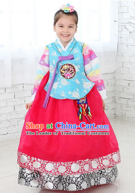 Traditional Korean National Handmade Formal Occasions Girls Clothing Palace Hanbok Costume Embroidered Blue Blouse and Red Dress for Kids