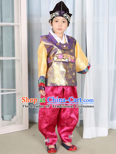 Traditional Korean National Handmade Court Embroidered Purple Costume, Asian Korean Boys Hanbok Clothing for Kids