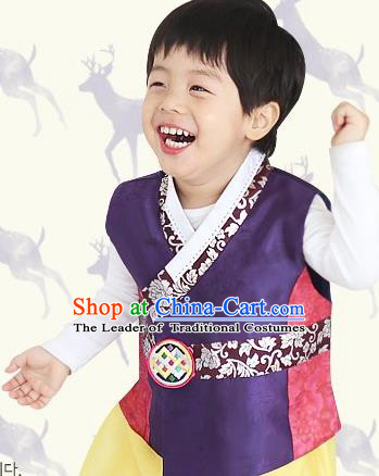 Traditional Korean Hanbok Clothing Fashion Apparel Hanbok Costume and Headwear