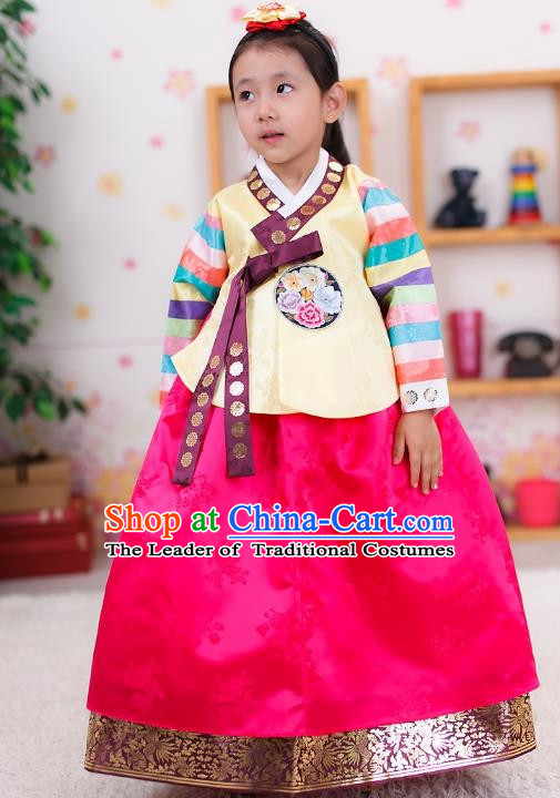 Traditional Korean Handmade Formal Occasions Embroidered Girls Wedding Costume Palace Hanbok Clothing for Kids