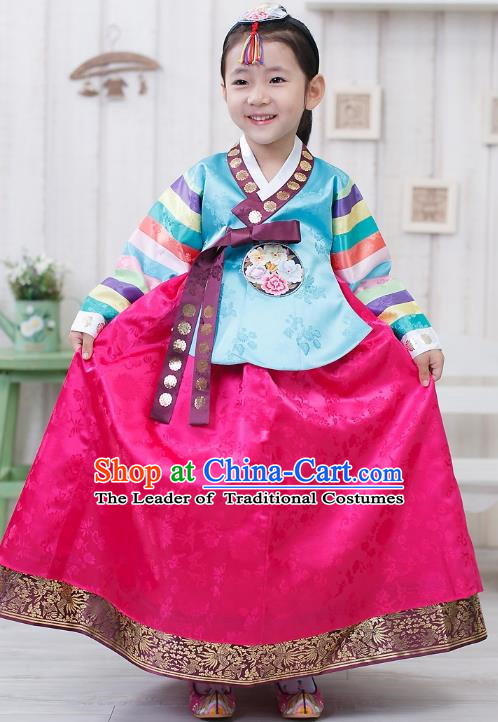 Traditional Korean Handmade Formal Occasions Embroidered Girls Wedding Costume Blue Blouse and Pink Dress Hanbok Clothing for Kids