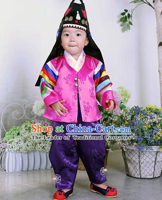 Traditional Korean Handmade Formal Occasions Embroidered Palace Prince Hanbok Rosy Clothing for Kids