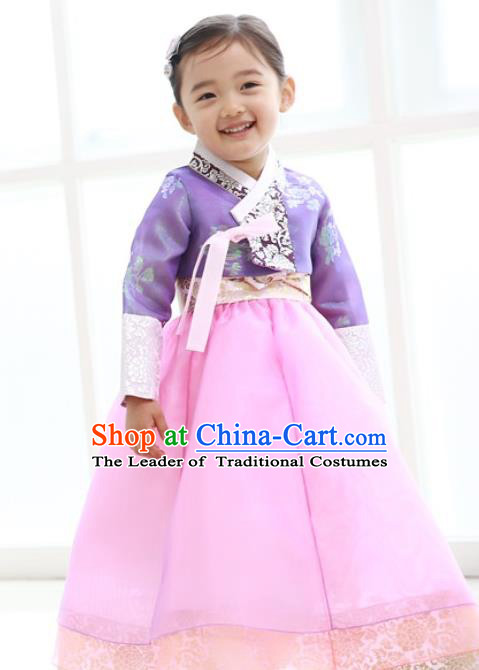 Traditional Korean Handmade Formal Occasions Embroidered Baby Princess Hanbok Pink Dress Clothing for Girls